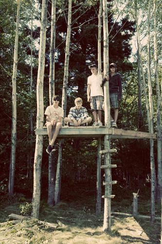 Treefort2web