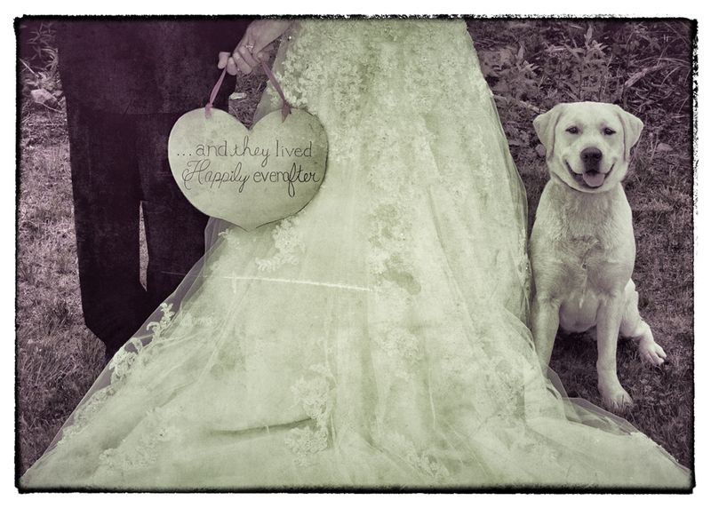 Happily ever after photoshoptexture