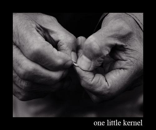 one little kernel