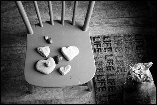 Charlies_valentine